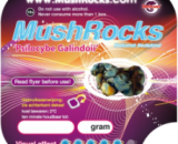 Magic Truffles Galindoi Mushrocks